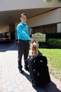 rosen inn dog friendly